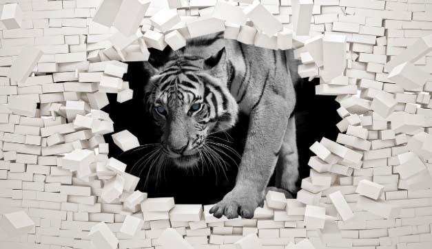 Тигр в стене