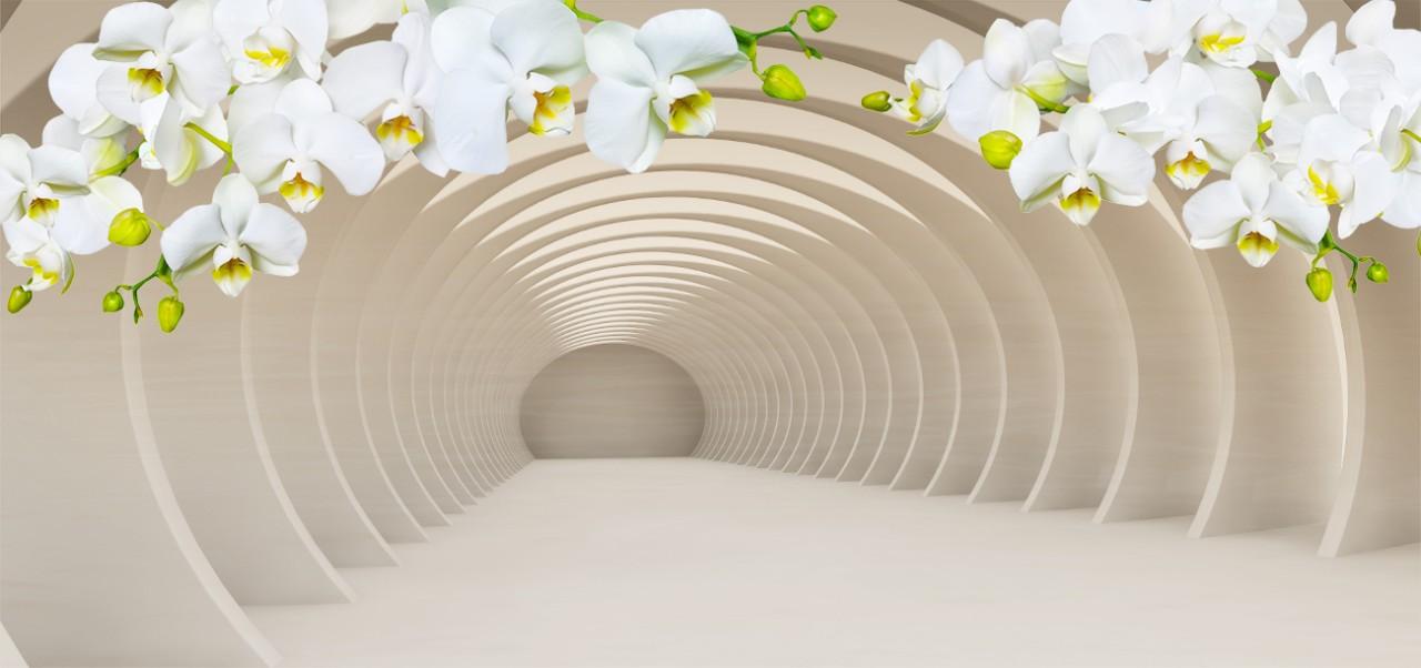 Туннель с орхидеями