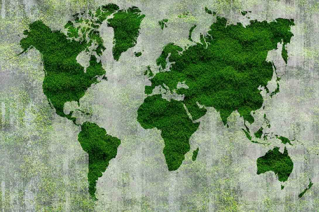 Карта и трава