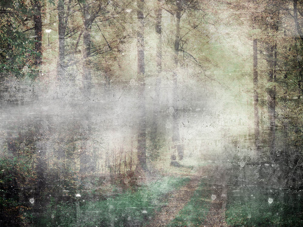 Абстракция лес