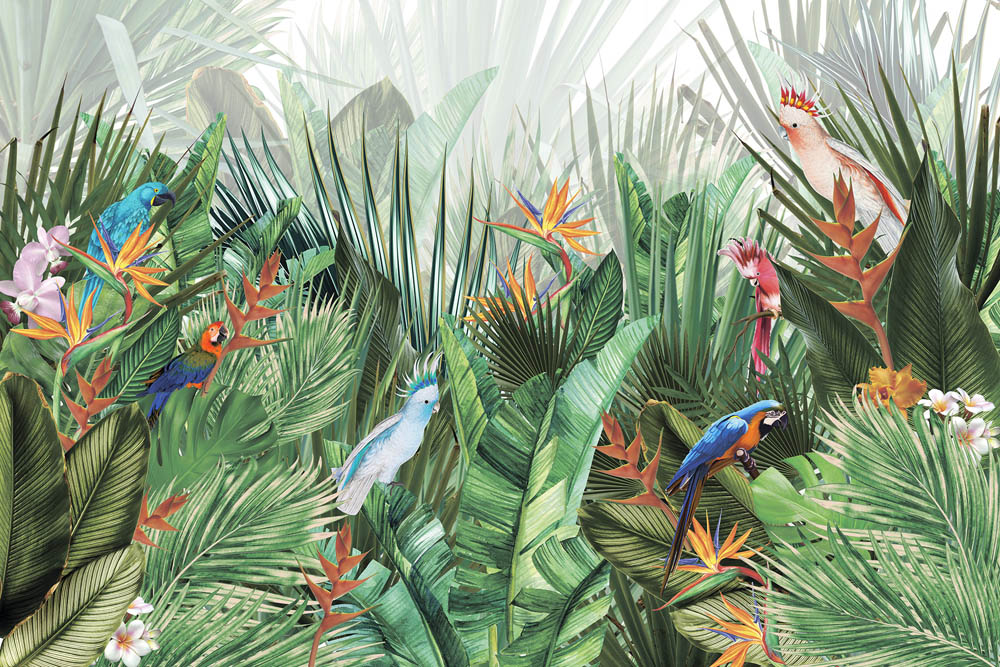 Тропический сад с попугаями