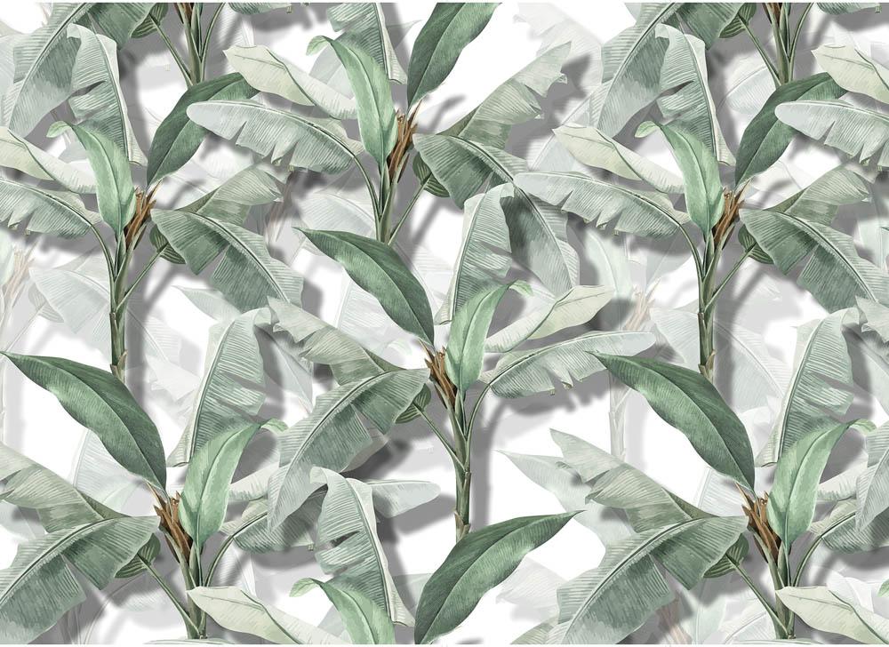 Веточки банановых листьев