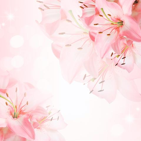 Розовые Лилиии