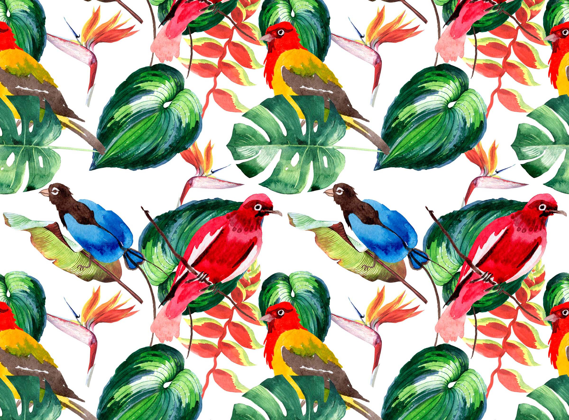 Тропические попугаи на листьях