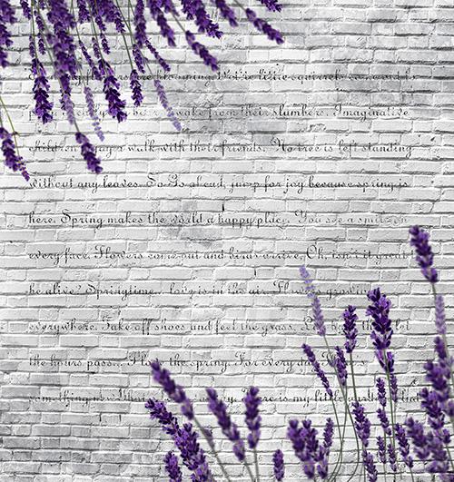 Лаванда на кирпичной стене