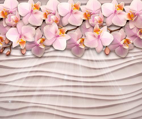 Орхидея на стене