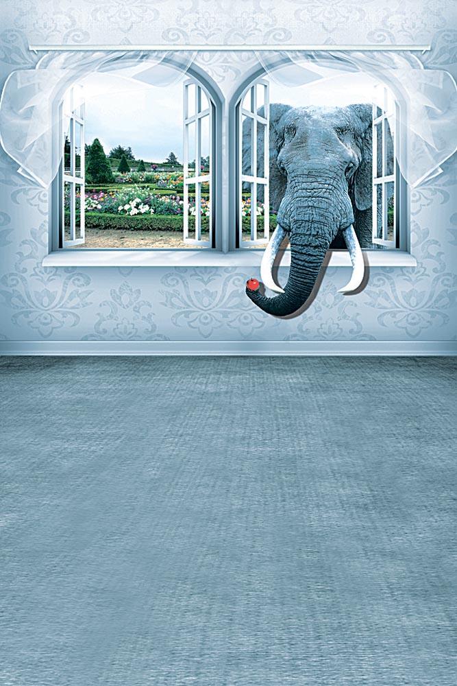 Слон в окне