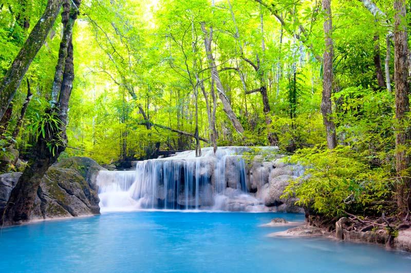 Водопад с лесу