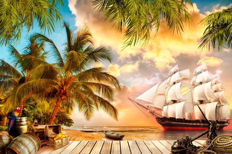 Пираты в море