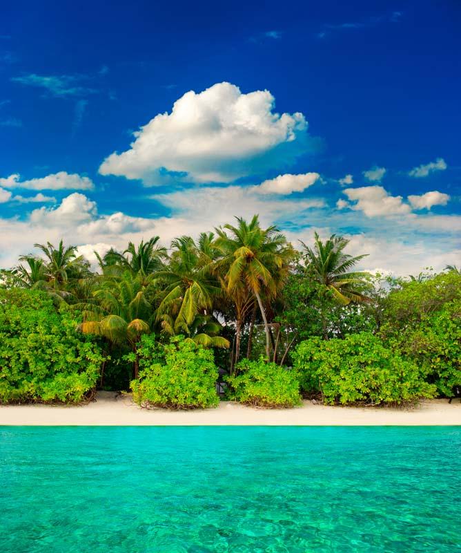 Пальмовый пляж