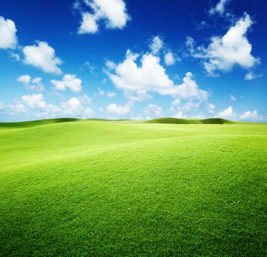 Зеленое поля и облака