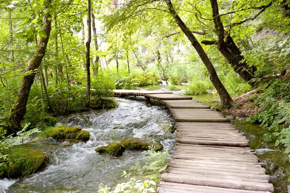Мост по реке