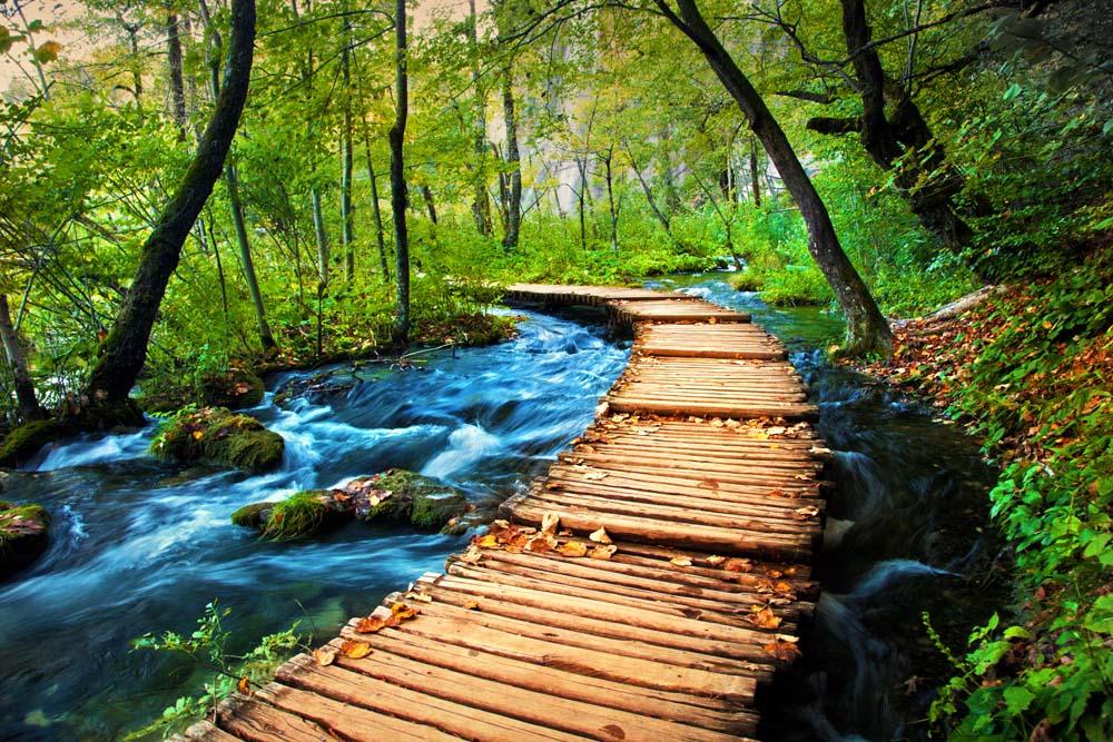 Мост к реке