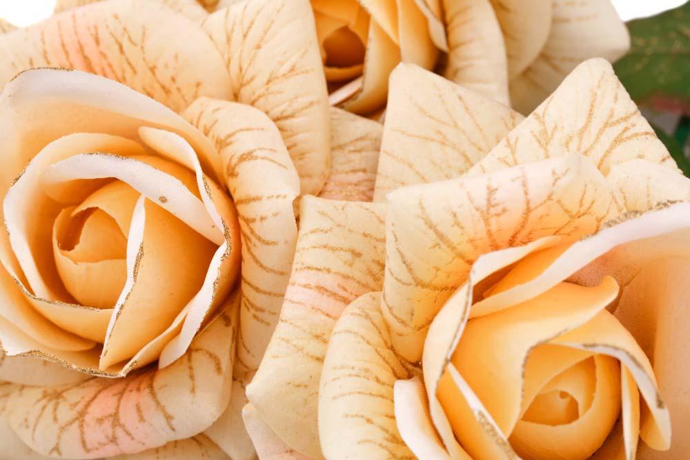 Розы с рисунком