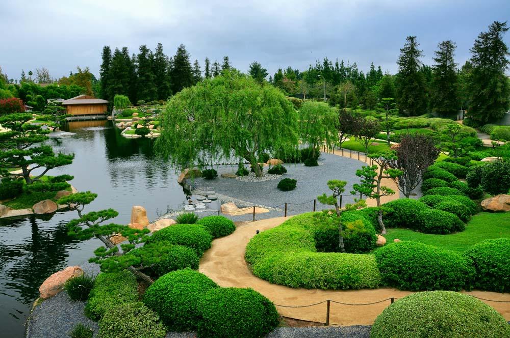 Зеленый парк с озером