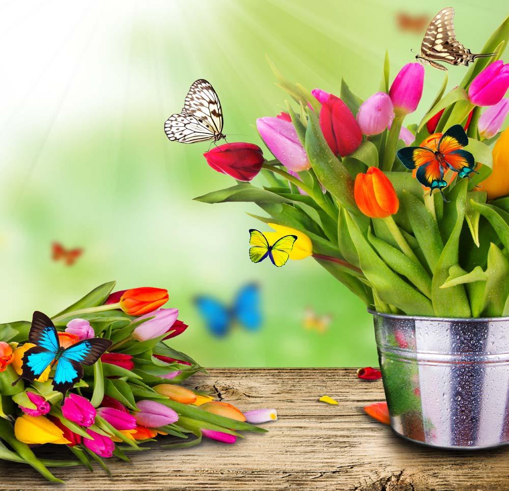 Букеты тюльпанов с бабочками