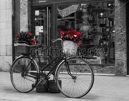 Цветы в корзине велосипеда