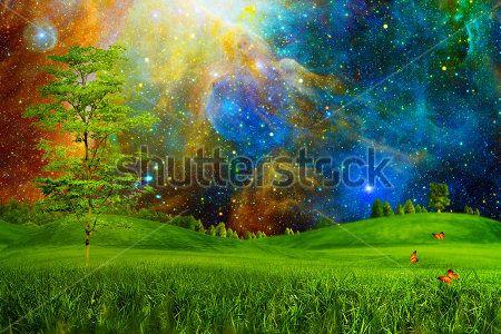 Космическая поляна
