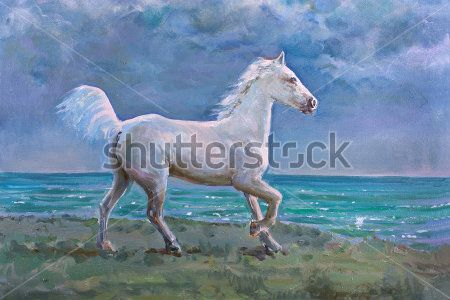 Лошадь у моря