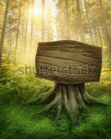 Табличка в лесу