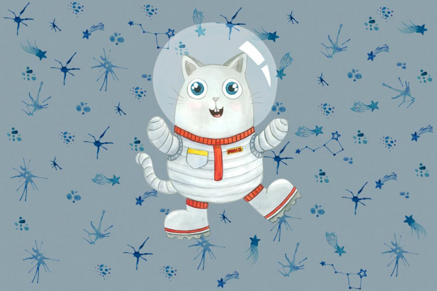 Котик космонавт