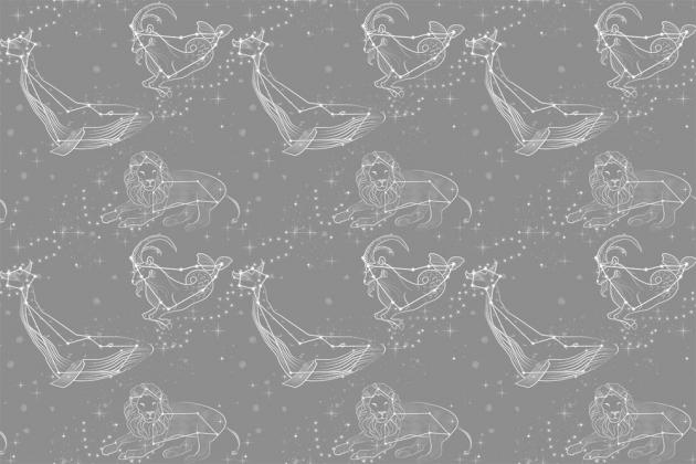 Животные в виде созвездий