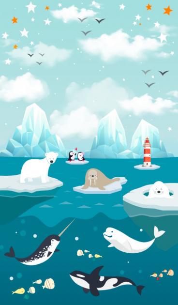 Касатки и киты