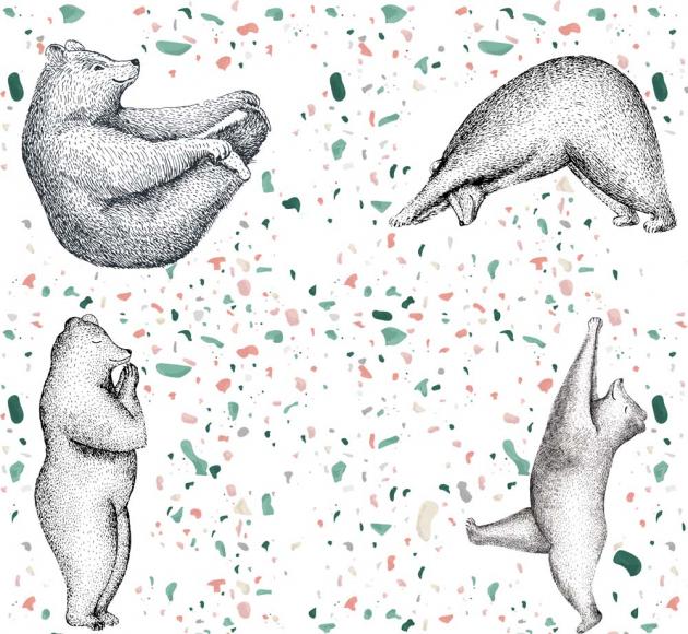 Медведи гимнасты
