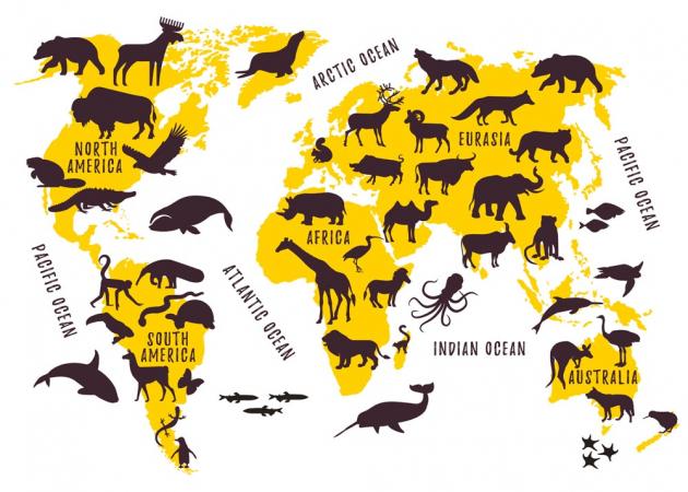 Желтая карта мира