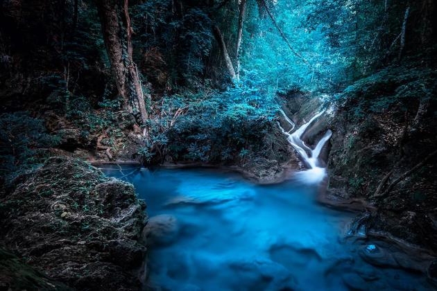Маленький водопад в лесу