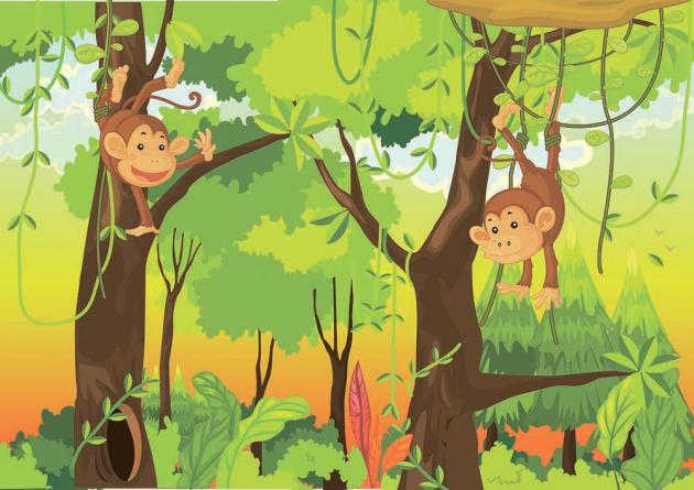 Лесные обезьянки