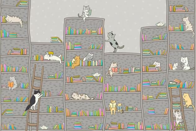 Котики читают книги