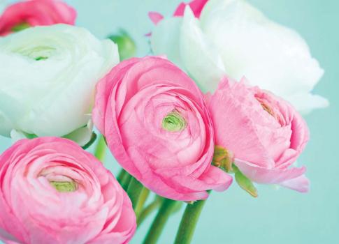 Цветы 3D 360х260 Сатин