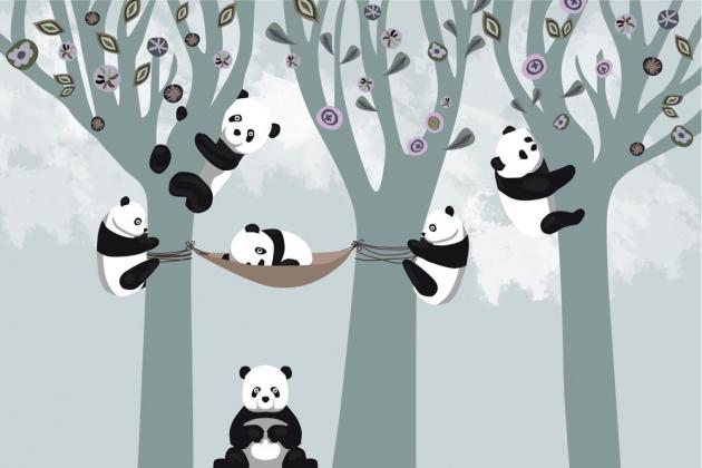 Панды в лесу