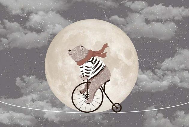 Мишка с велосипедом