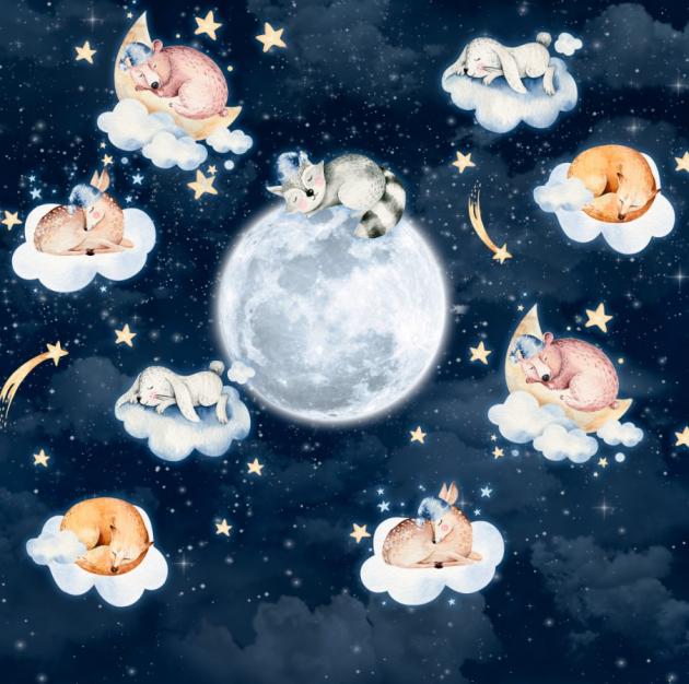 Спящий космос