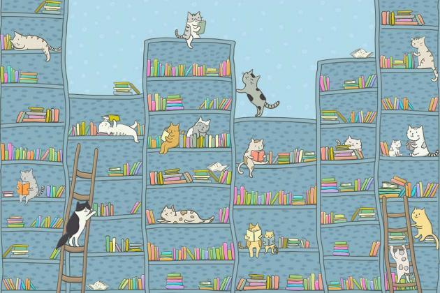 Библиотека для кота