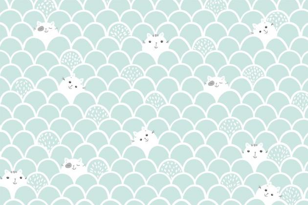Котики на стене