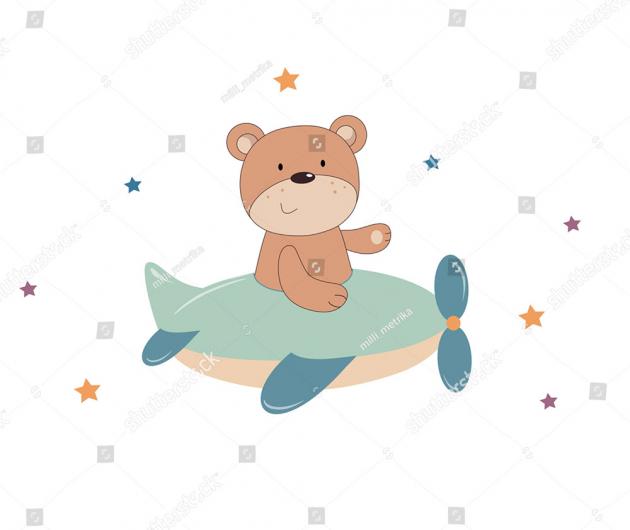 Медведь в самолетике