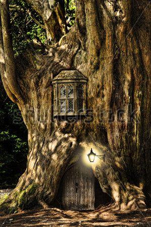 Дерево домик